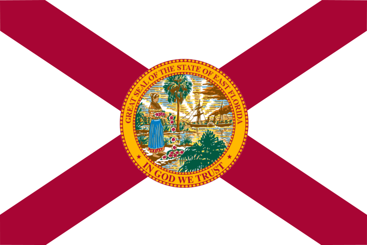Florida Punitive Damages